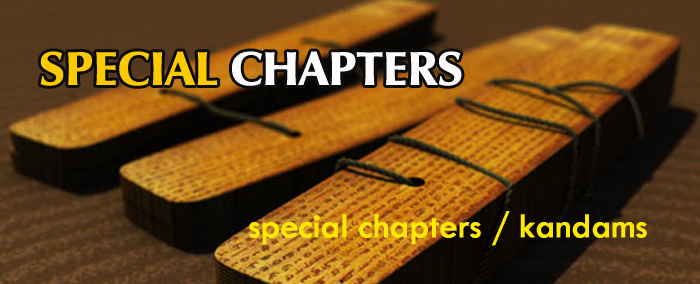 special-chapters